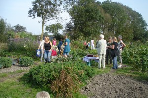 dorpstuin open tuin 24 sept 2011